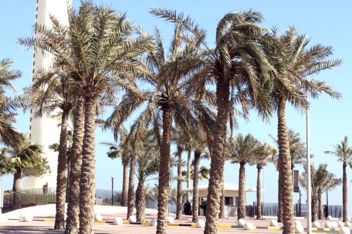 kuwait_eevsku2
